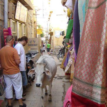 Indie 2006 – Jaisalmer