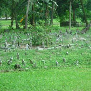 który sąsiaduje ze starym cmentarzem,